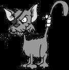 cat-47896_6401